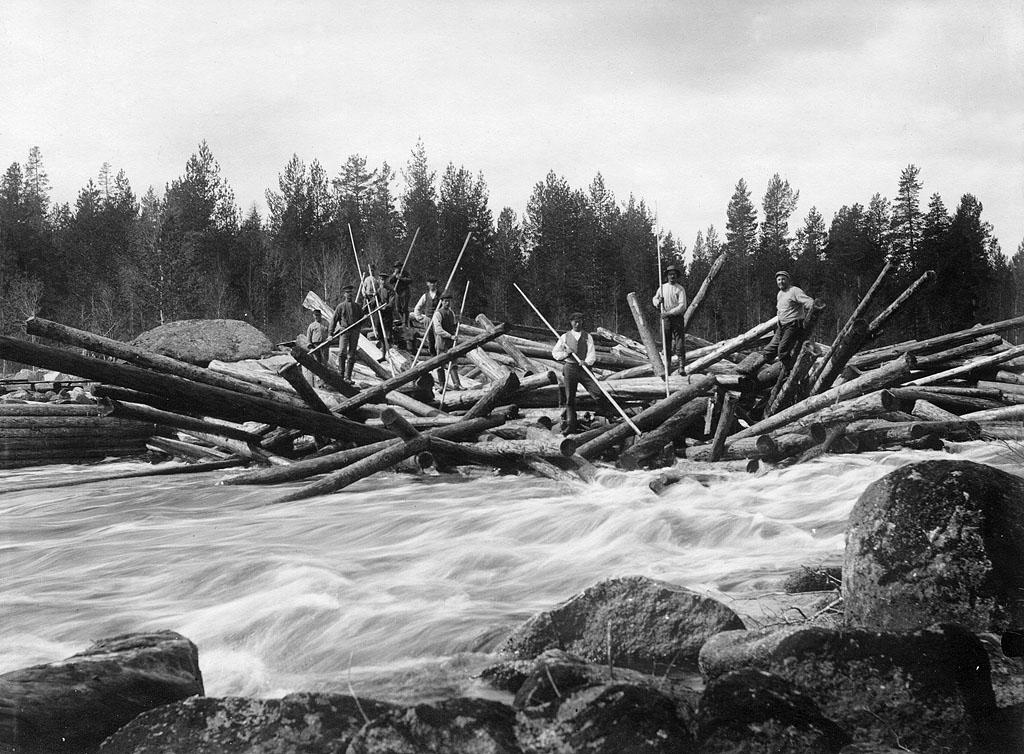Flottarna byggde svensk träindustri